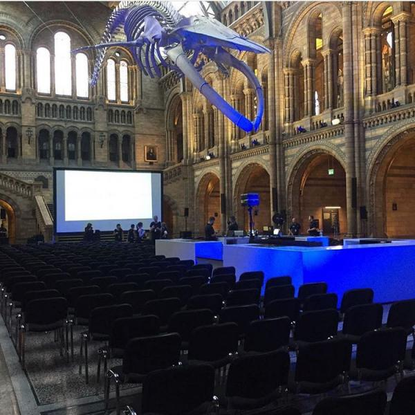 conference chair hire in situ